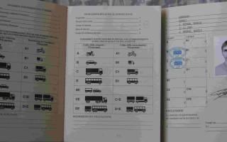 Что такое международные права водительские